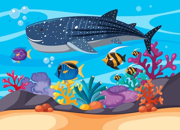 Scena subacquea con balena e altri pesci