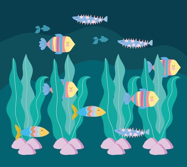 Il mondo sottomarino pesca pietre di alghe
