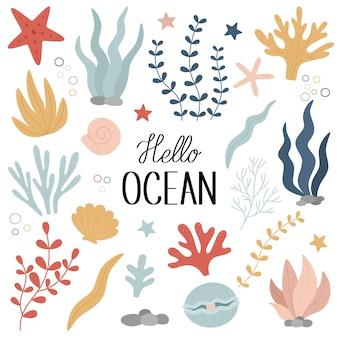 Mondo sottomarino un insieme di coralli di alghe conchiglie una perla una stella marina