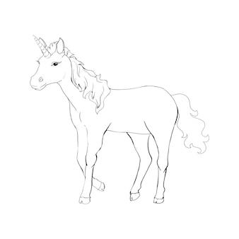 Unicorno, illustrazione di lino vettoriale disegnata a mano per logotype