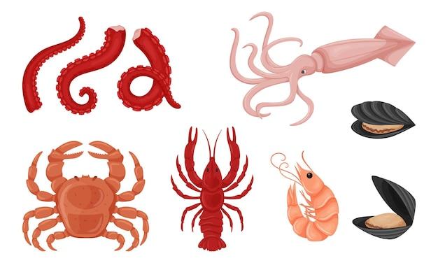 Pesce con la buccia, pezzo di filetto crudo, tentacoli di polpo, gamberi, calamari, gamberi di fiume, salmone. frutti di mare.