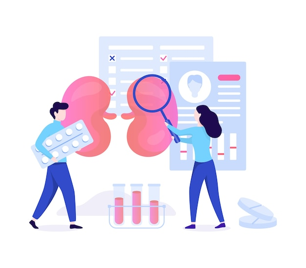 Concetto di urologia. idea di trattamento dei reni e della vescica, cure ospedaliere. trattamento medico. illustrazione