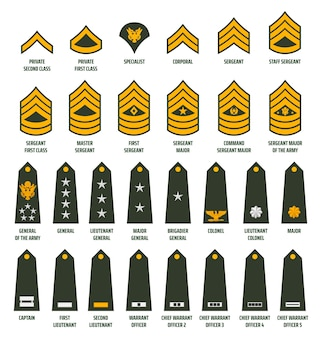 L'esercito americano ha arruolato gradi galloni e insegne