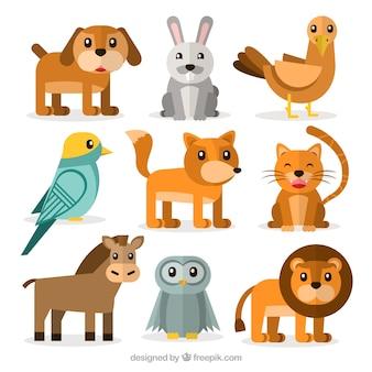 Varietà di simpatici animali piatte
