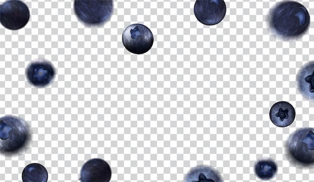 Varie forme di mirtilli su sfondo trasparente
