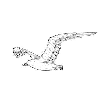 Illustrazione artistica vettoriale di gabbiano fatta a mano con penna e inchiostro