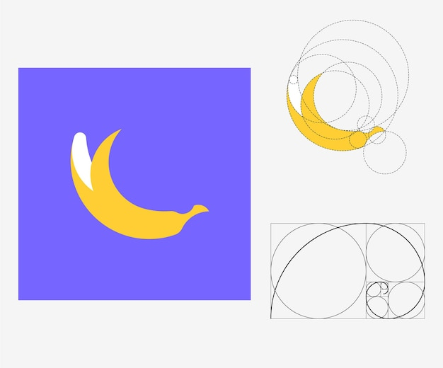 Banana vettoriale in stile rapporto aureo. illustrazione modificabile