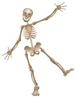 Scheletro umano del fumetto di vettore che balla la festa di halloween