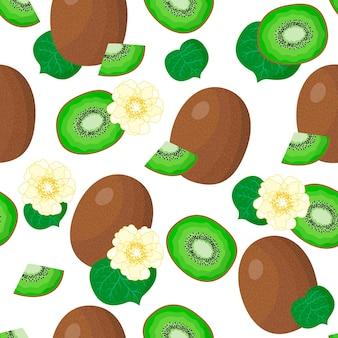 Vector cartoon seamless pattern con actinidia chinensis o kiwi frutta esotica, fiori e foglie