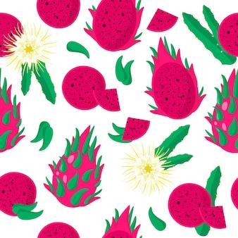Vector cartoon seamless pattern con dragonfruit o sweet red pitaya frutti esotici, fiori e foglie su sfondo bianco