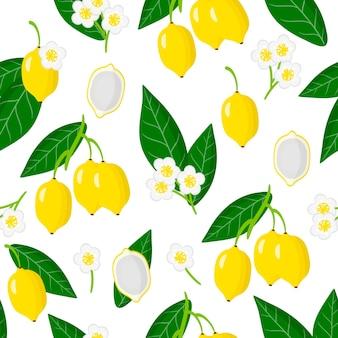 Vector cartoon seamless pattern con garcinia gardneriana o bacupari frutti esotici, fiori e foglie.