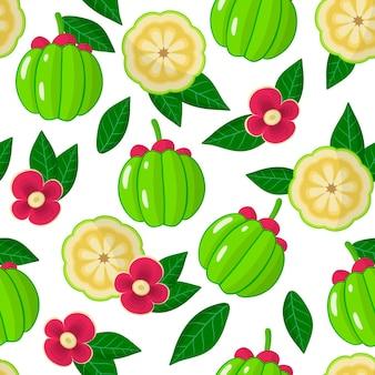 Reticolo senza giunte del fumetto di vettore con garcinia o frutta di scimmia frutti esotici, fiori e foglie su sfondo bianco