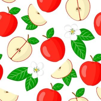 Vector cartoon seamless pattern con malus domestica o mela rossa frutti esotici, fiori e foglie