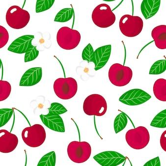 Vector cartoon seamless pattern con prunus avium o ciliegie frutti esotici, fiori e foglie