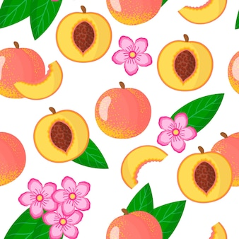 Vector cartoon seamless pattern con prunus persica o peach frutta esotica, fiori e foglie
