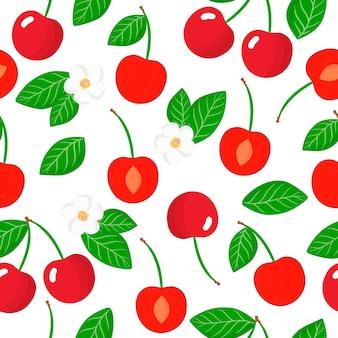 Vector cartoon seamless pattern con prunus subgen. cerasus o ciliegia frutti esotici, fiori e foglie