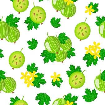 Vector cartoon seamless pattern con ribes uva-crispa o uva spina comune frutti esotici, fiori e foglie