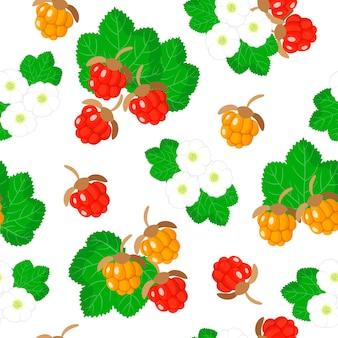 Vector cartoon seamless pattern con rubus chamaemorus o lampone frutti esotici, fiori e foglie