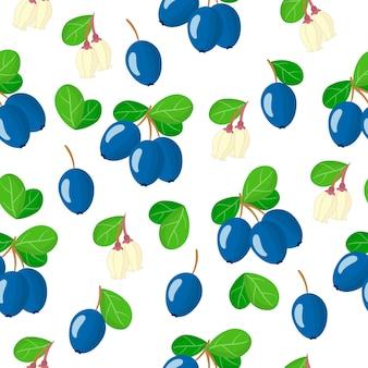 Vector cartoon seamless pattern con vaccinium uliginosum o bog mirtillo frutti esotici, fiori e foglie