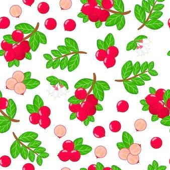 Vector cartoon seamless pattern con vaccinium vitis-idaea o mirtillo rosso frutti esotici, fiori e foglie