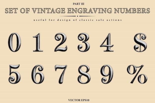 Accumulazione di vettore dei numeri incisione vintage. insieme di cifre da 0 a 9, simbolo del dollaro e segno di percentuale.
