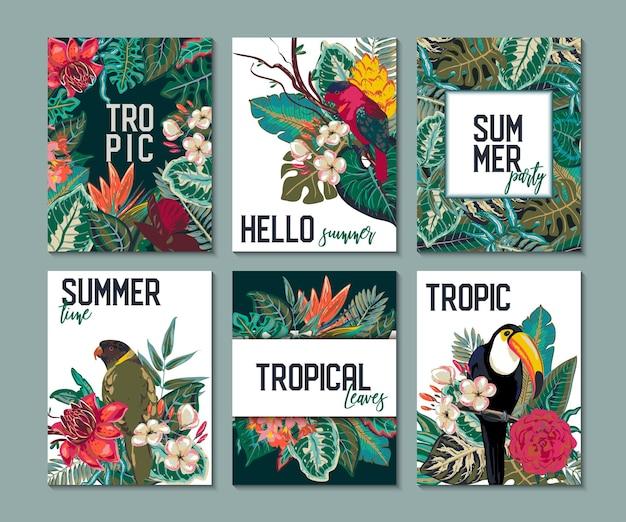 Collezione vettoriale con sei carte note e striscioni con fiori esotici tucano