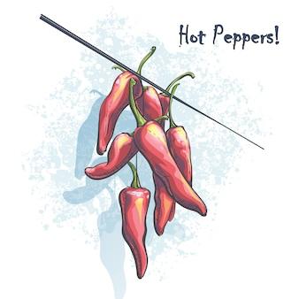 Illustrazione di colore di vettore un mucchio di peperoncino