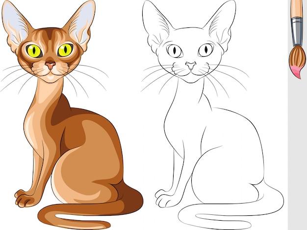 Libro da colorare di vettore del gatto rosso serio abissino