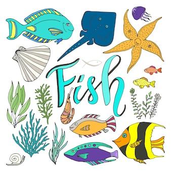 Set di pesci vettoriali. marino disegnato a mano con pesci colorati