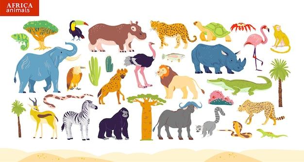 Illustrazione vettoriale piatta di animali africani, deserto, piante: elefanti, rinoceronti, scimmie, zebre, coccodrilli, fenicotteri, tartarughe, palme, cactus ecc. per bambini alfabeto, infografica, libro, banner, tag.