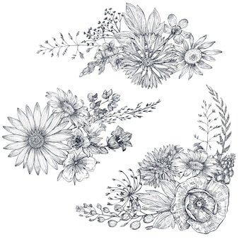 Mazzi floreali vettoriali con erbe e fiori di campo disegnati a mano in bianco e nero nello stile di abbozzo.