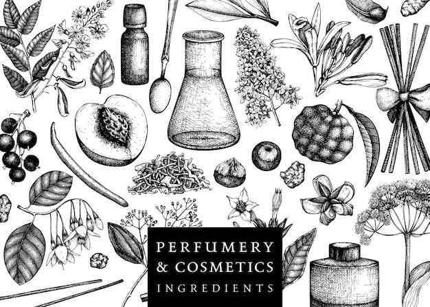 Cornice vettoriale con fiori e frutti profumati illustrazione di ingredienti di profumeria e cosmetici progettazione di piante aromatiche e medicinali modello botanico per invito o biglietto di auguri