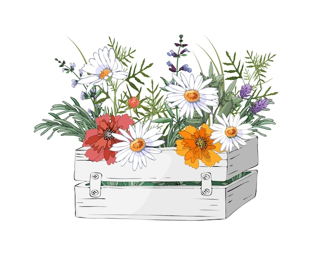 Vector i fiori del giardino in una scatola bianca di legno del giardino