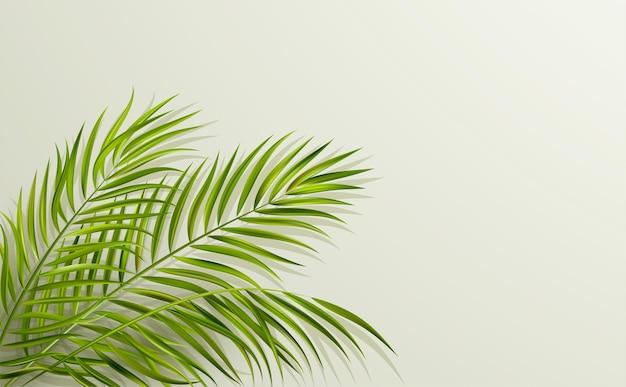 Foglia verde vettoriale di palma con ombra di sovrapposizione su sfondo grigio minimo