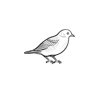 Icona di doodle di contorno uccello disegnato a mano di vettore. illustrazione di schizzo di uccello per stampa, web, mobile e infografica isolato su sfondo bianco.