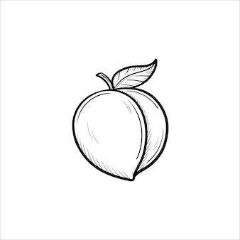 Icona di doodle di contorno di prugna disegnato a mano di vettore. illustrazione di schizzo di prugna per stampa, web, mobile e infografica isolato su sfondo bianco.