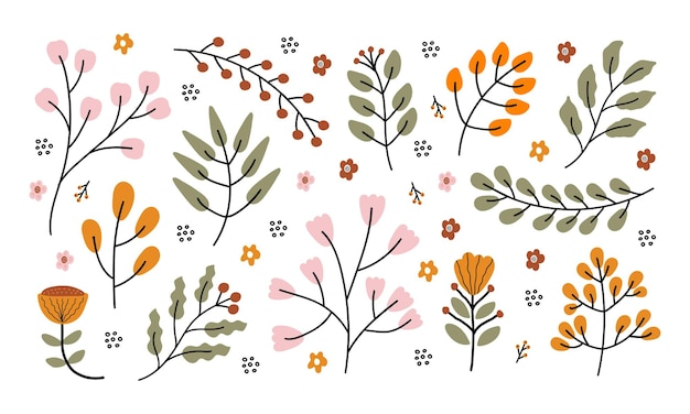 Insieme disegnato a mano di vettore dei rami con le foglie dei fiori e le bacche isolate su fondo bianco