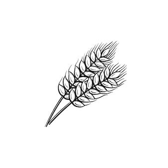 Icona di doodle di contorno di grano disegnato a mano di vettore. illustrazione di schizzo di orzo per stampa, web, mobile e infografica isolato su sfondo bianco. Vettore Premium