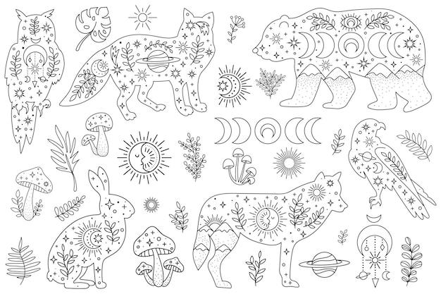 Animali del bosco disegnati a mano di vettore ed elementi boho per la decorazione clipart bohémien