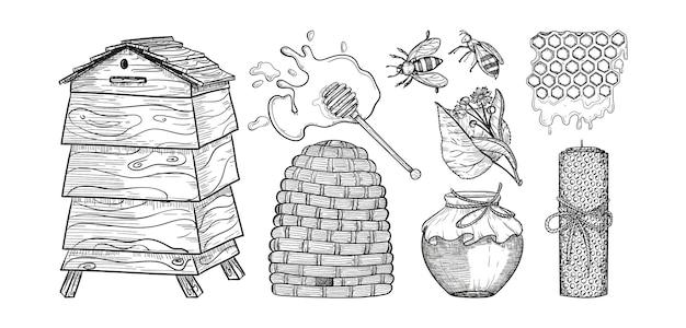Insieme del miele di vettore illustrazione disegnata a mano dell'annata elementi dell'icona del miele nello stile inciso di schizzo