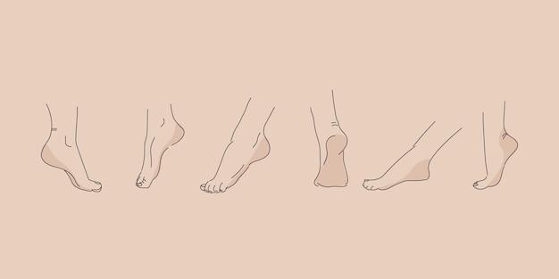 Piede umano vettoriale in varie pose. disegno a mano con una linea. set di piedi femminili per il design.