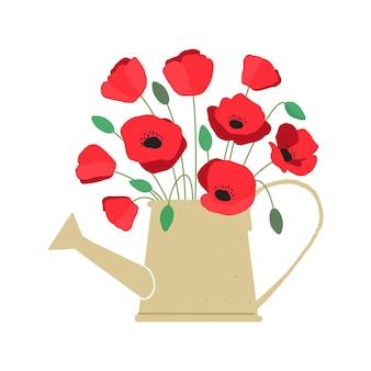 Illustrazione vettoriale di bouquet di fiori di papavero rosso brillante in annaffiatoio isolato su sfondo bianco
