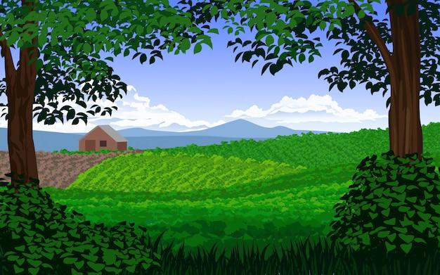 Illustrazione vettoriale di campagna con vigneti e montagne