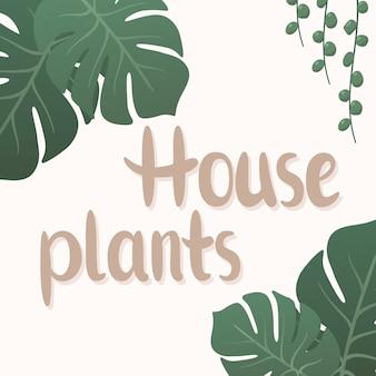 Illustrazione vettoriale di scritte di piante da appartamento con decorazioni di foglie di monstera tropicali