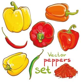 Illustrazione vettoriale di peperoni, peperoncino, pepe di caienna e spezie. . isolato. set di peperoni.