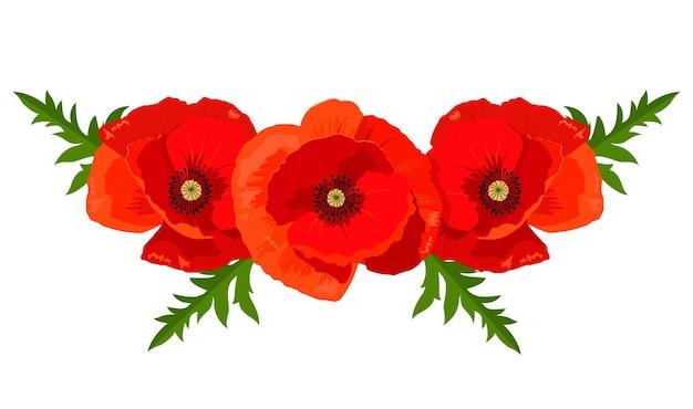 Illustrazione vettoriale di papaveri rossi per la progettazione di striscioni, inviti e cartoline.