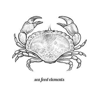 Illustrazione vettoriale di granchio di mare