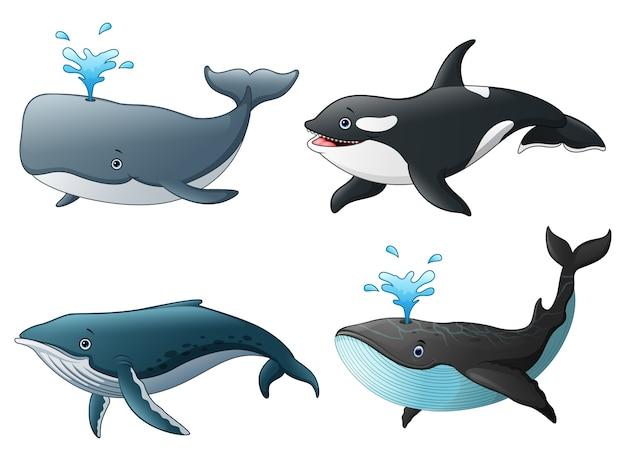 Illustrazione vettoriale di set di pesci marini del mare