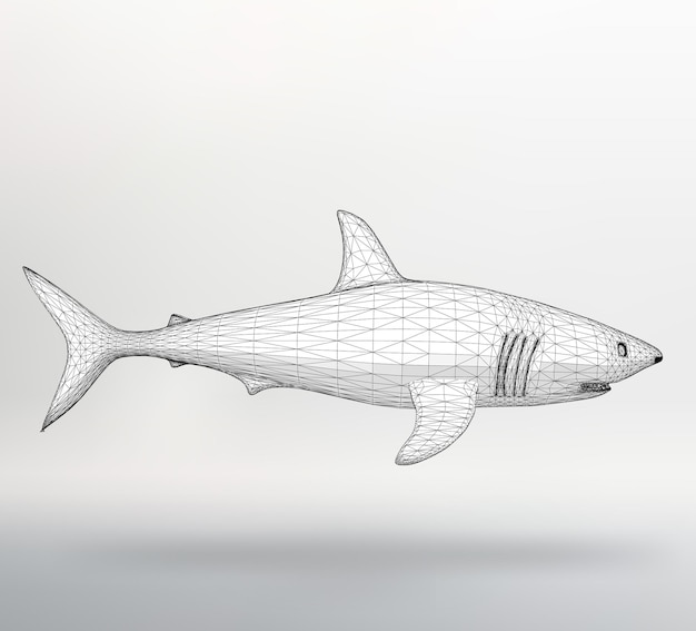 Squalo di illustrazione vettoriale. la griglia strutturale dei poligoni. stile di disegno di sfondo astratto