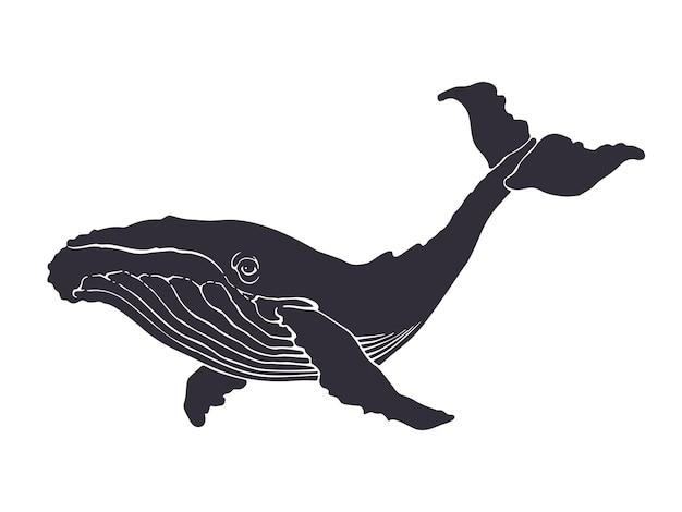 Illustrazione vettoriale silhouette di grande balena fauna subacquea e animali marini